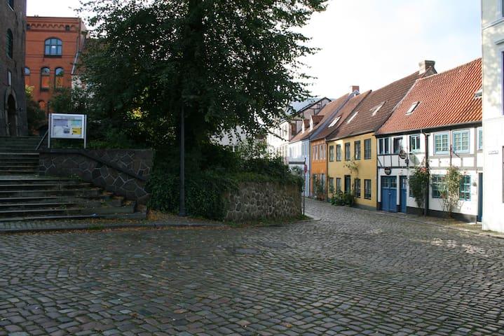 Ferienwohnung Stadtgrün - Flensburg - Appartement