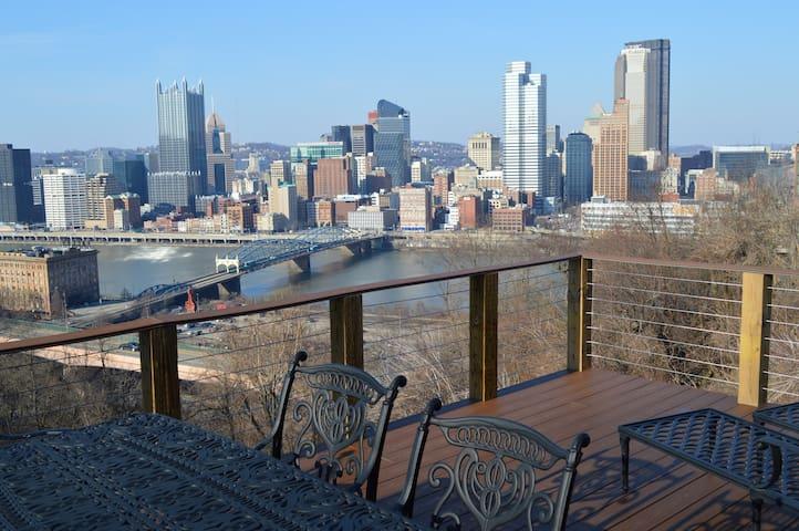 City Skyline & Close to Everything! - Pittsburgh - Huoneisto