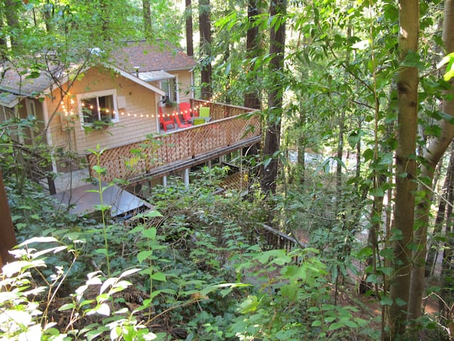Peaceful Redwood Retreat w/ HOT TUB - Monte Rio - Huis