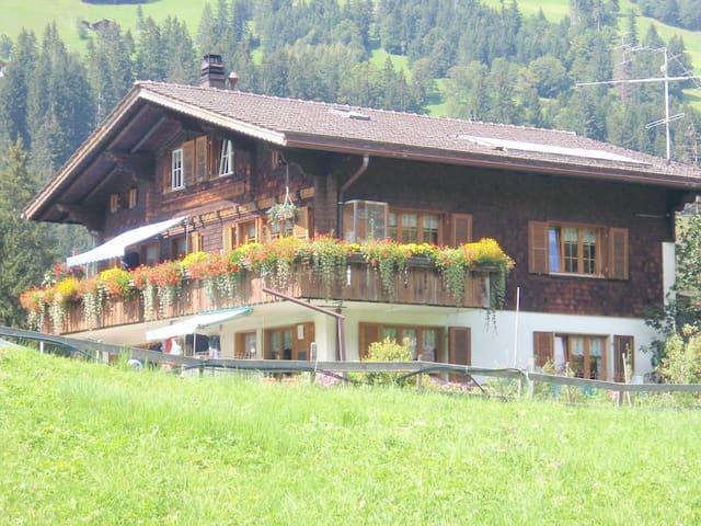 Ausruhen in den Bergen in Adelboden- Swiss Alps! - Adelboden