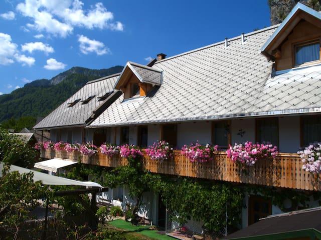 Shangri-la at the cliff - Bled - Apartment