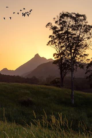 Private Rainforest Cabin Close to Town - Nunderi