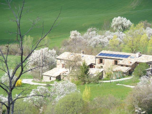 La ferme campanele - Saint-André-de-Rosans - Ház