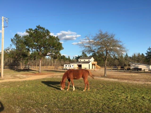 Hunt Box over Barn on Private Farm - Windsor - Casa