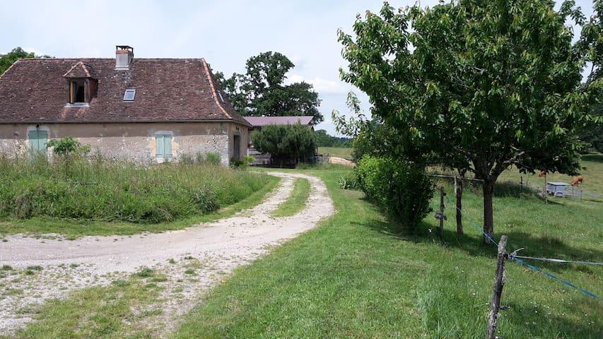 maison de caractère pleine nature, en Périgord - Saint-Crépin-d'Auberoche - Ev