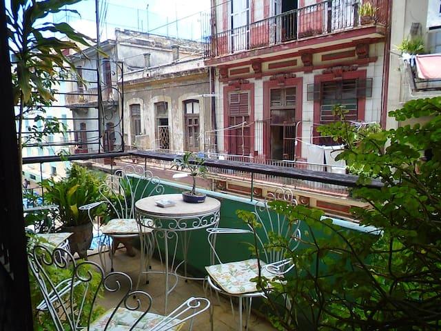 Elia's House - La Habana
