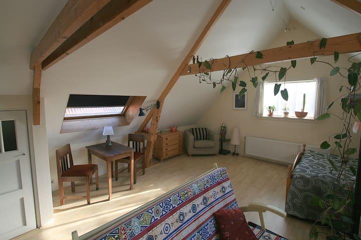 Knus appartement bij Elfstedenroute - Witmarsum - Lägenhet