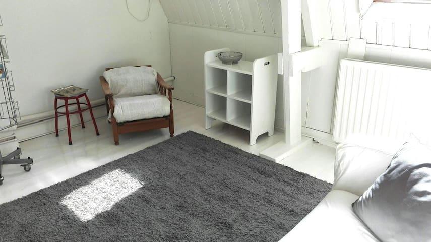 Sfeervolle bovenverdieping nabij centrum en park - Arnhem