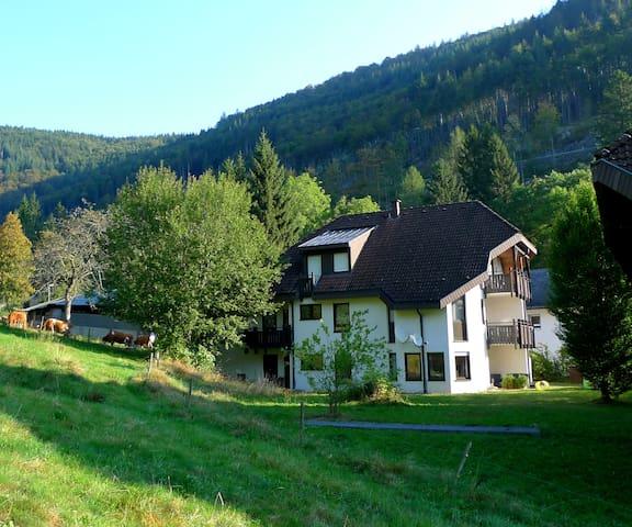 Naturnahe Ferien am Feldberg / Aftersteg - Todtnau - Apto. en complejo residencial
