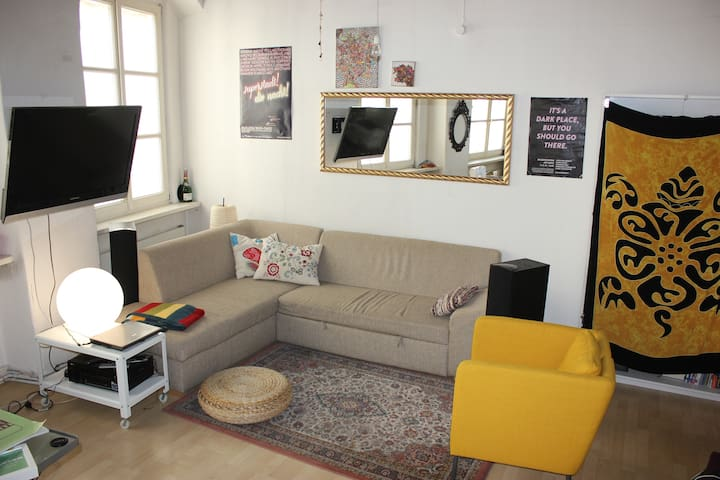 Beautiful bohemian Flat, middle of Old Town, 56m² - Linz - Appartement