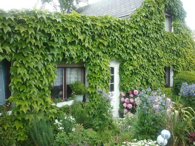 Kleines Ferienhaus in Liebengrün - Liebengrün    - Daire