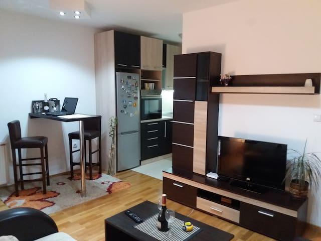 Beautiful apartment Niš, Serbia - Niš - Leilighet
