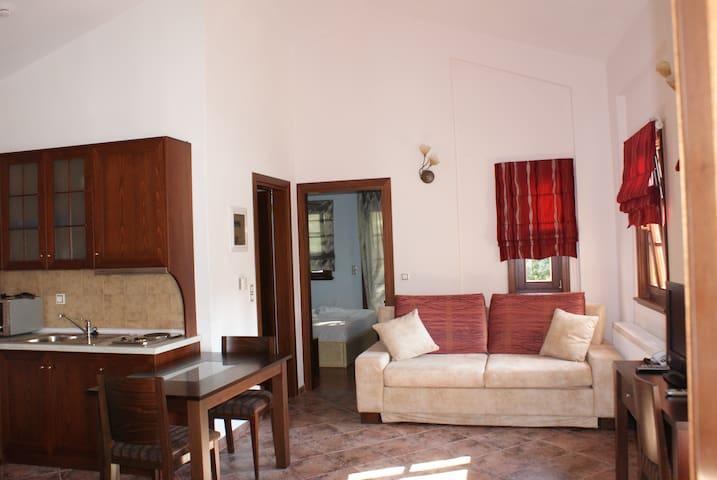 Ελ . Μαγκαφινης Τhe red apartment - Mikros Prinos - Appartement en résidence