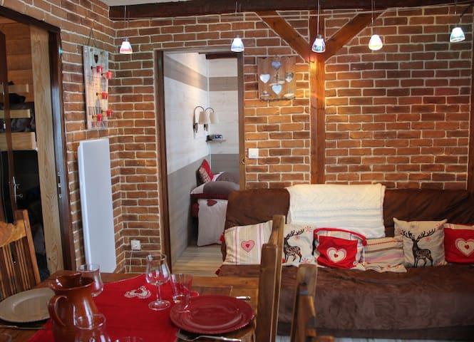 appartement charmant belle vue et tres bien equipe - Saint-Lary-Soulan - Leilighet