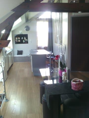 Chambre dans joli appartement Atypique - Voiron - 公寓