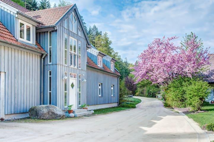 Romance for two in Bavarian Forest - Neunburg vorm Wald - Daire