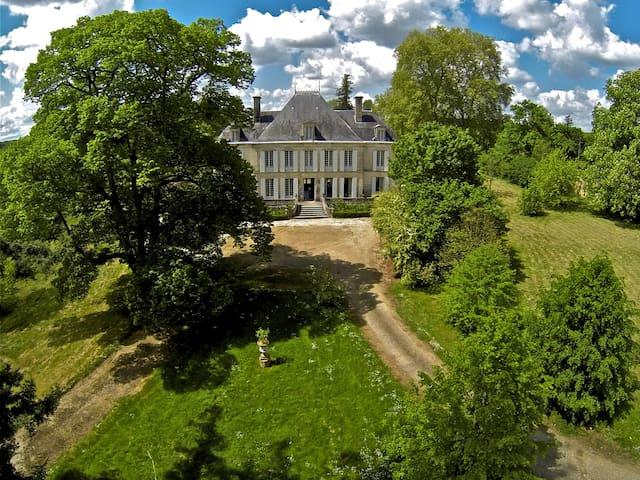 Small chateau, pool, private estate - Taillebourg - Slott