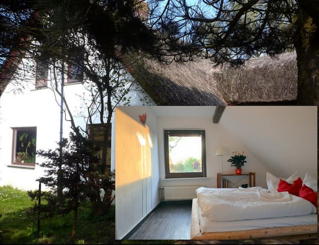 B&B in thatched house near water. - Klausdorf - Pousada