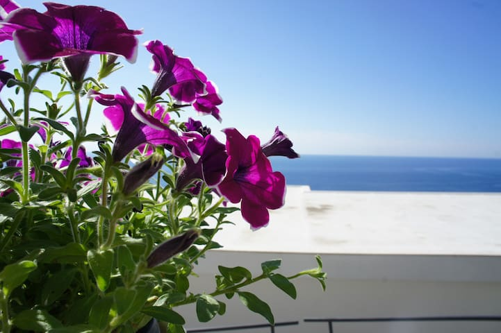 Casa Aurora. The perfect spot in Praiano - Praiano