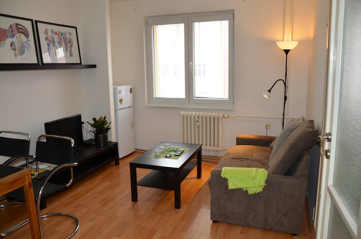 Lovely flat in Center of the City - Ostrava - Apartemen