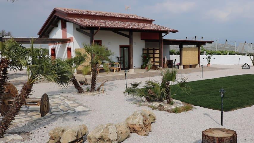 Casa Mattia b&b in paglia e legno - Cisterna di Latina - Hus