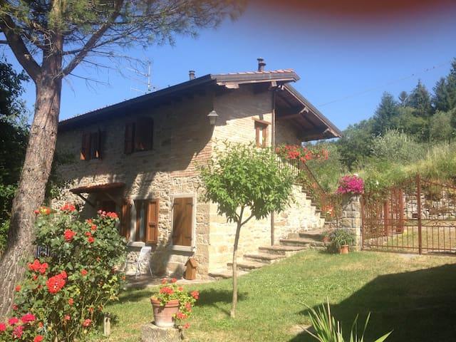 (URL HIDDEN) vallata del Casentino (casa 2) - Pratovecchio - Appartement