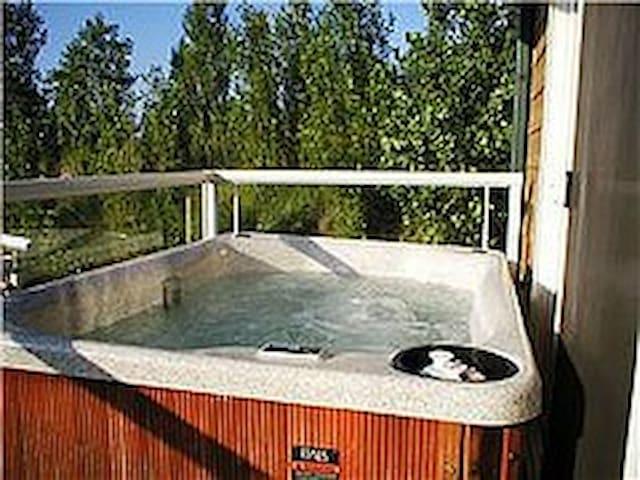 BeachHouse/Hot Tub(all year)Sauna/Jacuzzi/Pets - Michigan City - Lägenhet