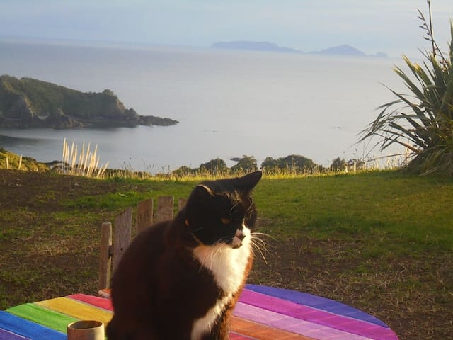 Purring Ocean Views - in a Nutshell - Tutukaka - Husbil/husvagn