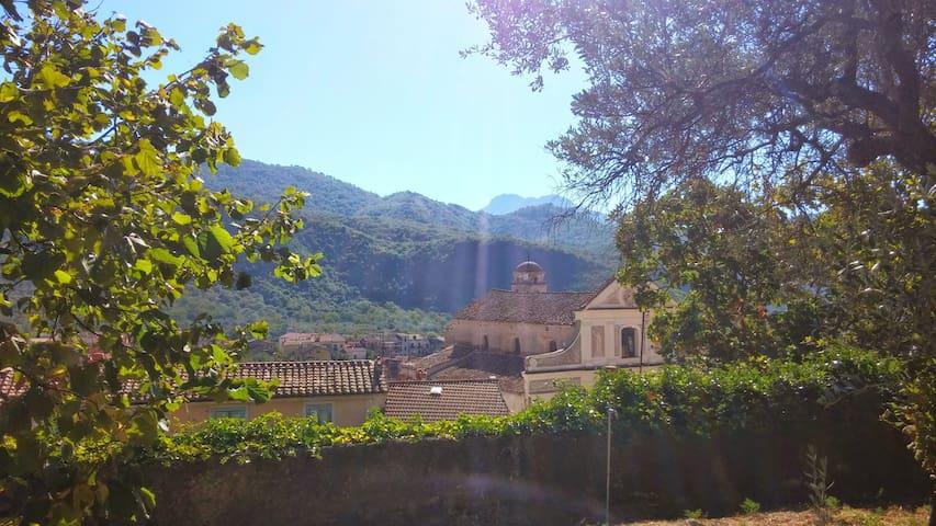 CAMERA TRIPLA IN RESIDENZA D'EPOCA - Giffoni Valle Piana - Casa