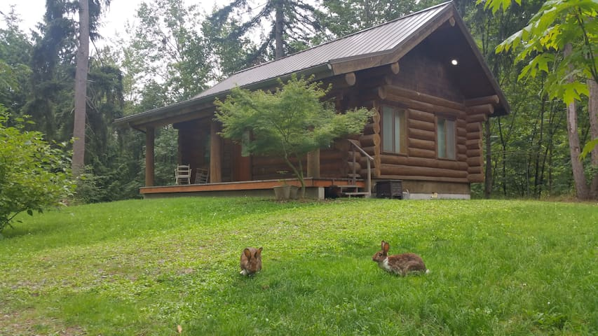 """The Cottontail Haven Lodge- your """"get-away"""" place - Lake Tapps - Stuga"""