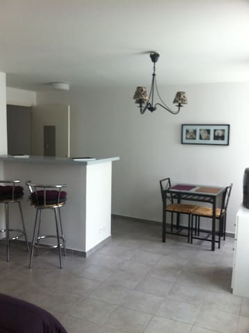 Beau studio plein centre - Saint-Geniez-d'Olt - Wohnung