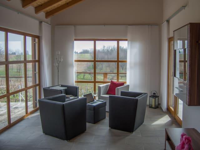 Country home at Vineyard in Croatia - Kloštar Podravski