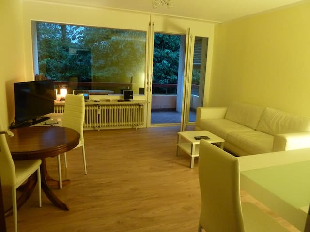 Newly nice renovated appartment  - Küssaberg - Daire