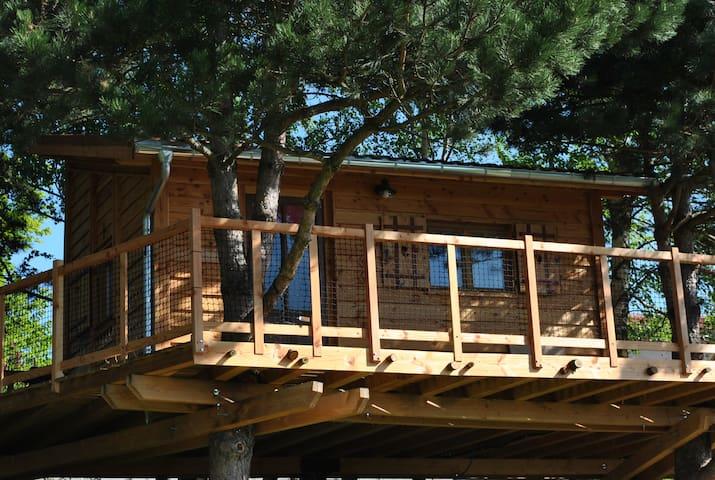 L' Etournelle cabane perchée/gite/chambre d'hôtes - Chaussan - Casa na árvore