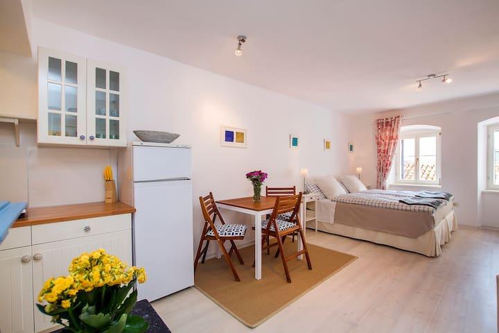 Comfortable studio in old town - Labin - Leilighet