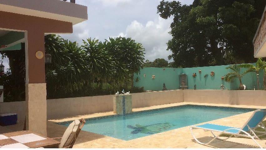 Studio Villa with private pool - Camuy - Vila