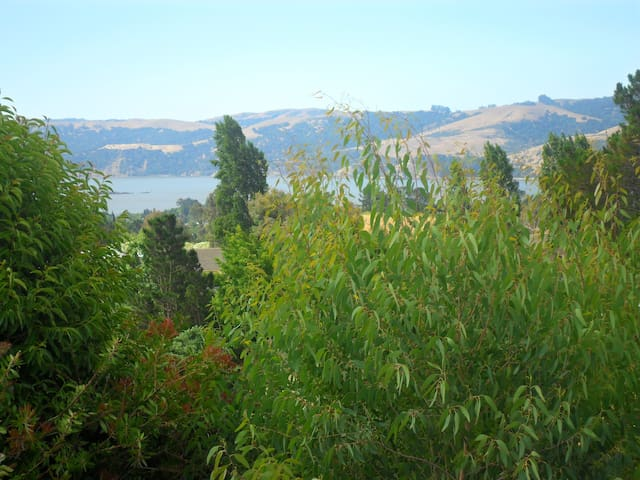 A Room with a View - Benicia - Hus