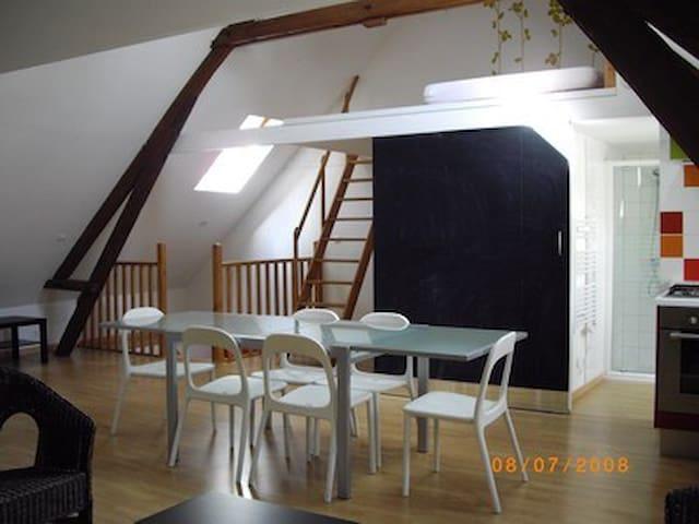 Loft 3 pers à la Ferme de Wolphus - Zouafques - Çatı Katı