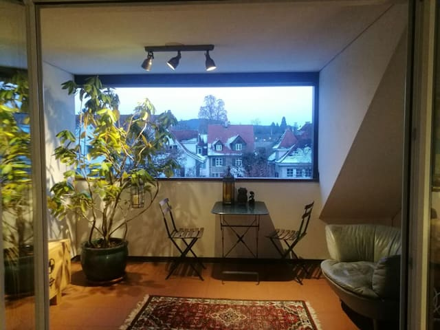 Bright 3,5 rooms rooftop appartment - Riehen - Apto. en complejo residencial