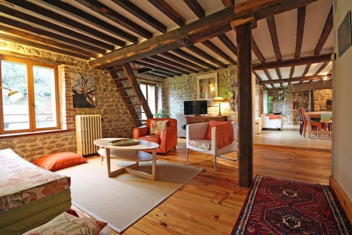 Ancien moulin situé dans un écrin de verdure - bréel  - Huis