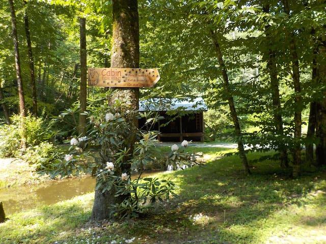 The Hemlock Hide-Away - Robbinsville - Cabaña