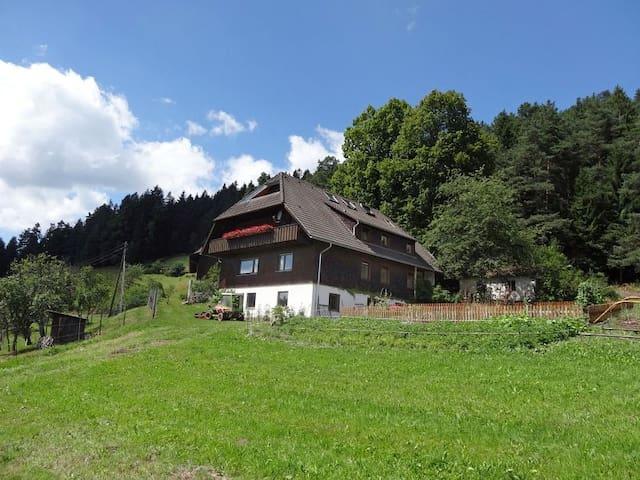 Ferien auf dem sonnigen Berg - Schramberg