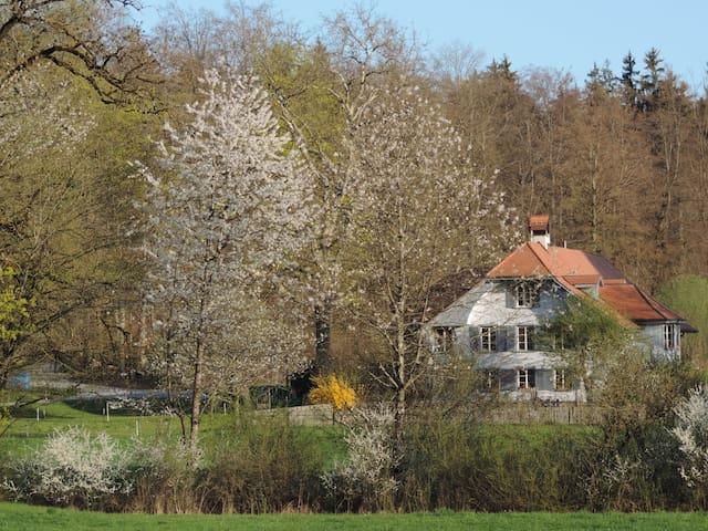 Guesthouse im Wald next to Bern - Neuenegg-Bern - Hus
