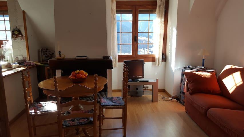 Acogedor apartamento con vistas al Aneto. - Pujo - Apartamento