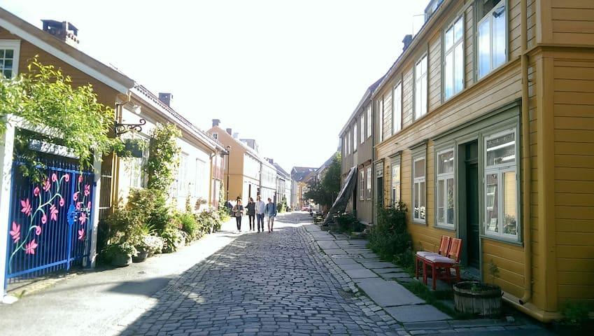 Bright flat in charming Bakklandet - Trondheim - Daire