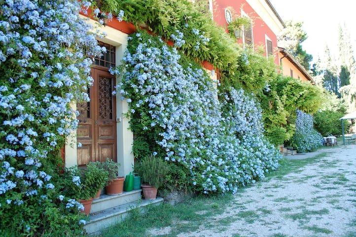 "Villa Galli app. ""Generale Alfredo"" - Fara In Sabina - Huoneisto"