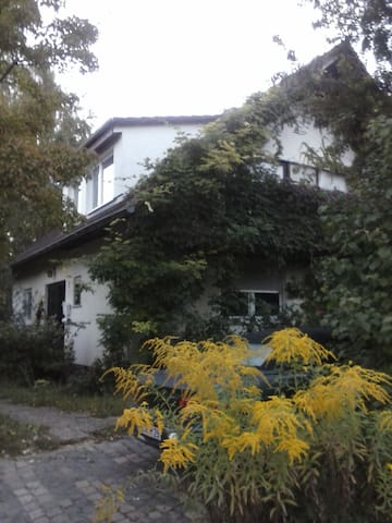 1 Room Appartment for 4 Person - Waldalgesheim - Rumah