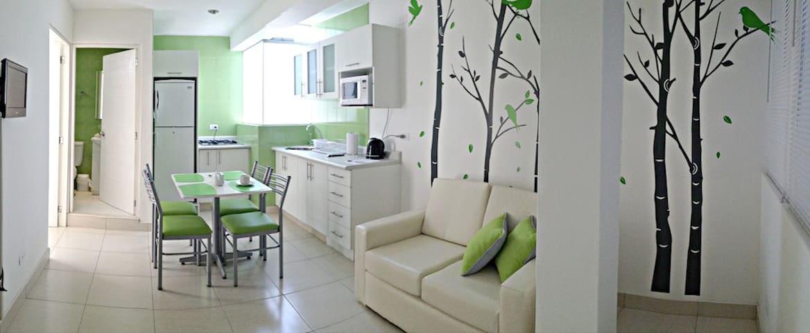 Charming Apartments in Pueblo Libre - Pueblo Libre - Appartement