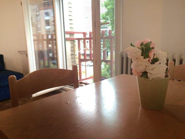 Studio Apartment in the City Center of Novi Sad - Novi Sad - Appartement
