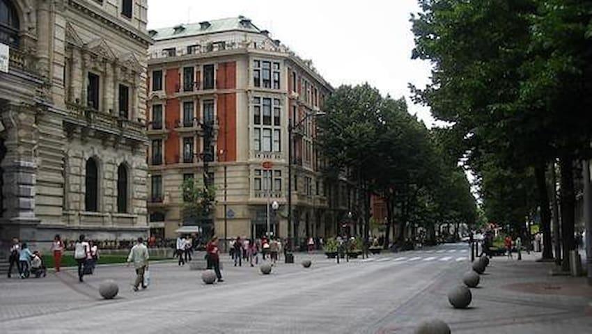 Habitación en el Centro de Bilbao con Desayuno - Bilbao - Hus